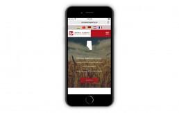CAAP Mobile Homepage